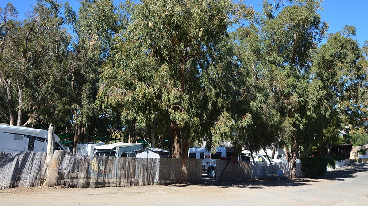 instalaciones-camping-mojacar-parcelas2